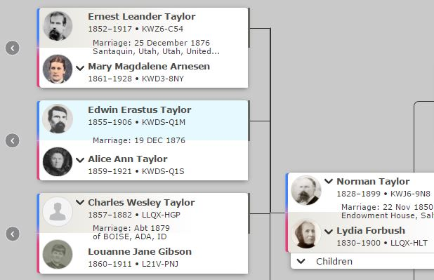 The Family History Guide